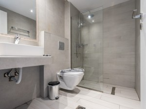 IMPORTANT CONSIDERATIONS WHEN CHOOSING A TOILET OR WATER CLOSET