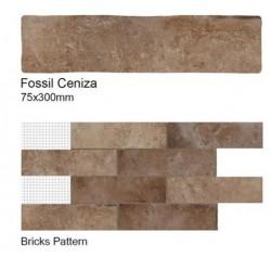Fossil Ceniza Wall Tiles 75x300mm